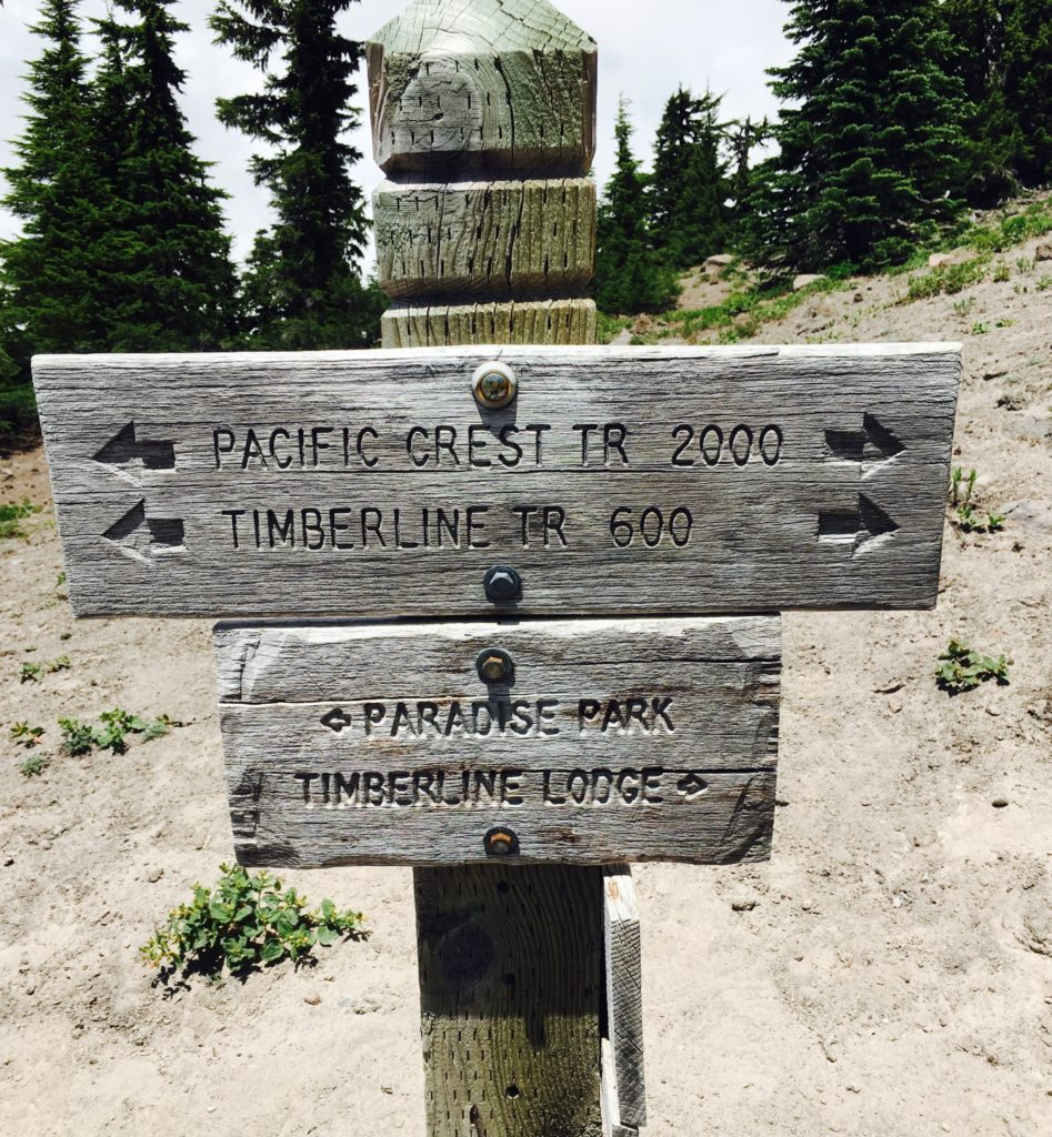 We reached the trailhead around 1:30 PM. I love that the PCT follows the Timberline Trail for awhile.