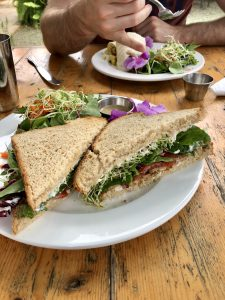 Tempeh BLT sandwich at Eat Healthy on Kauai