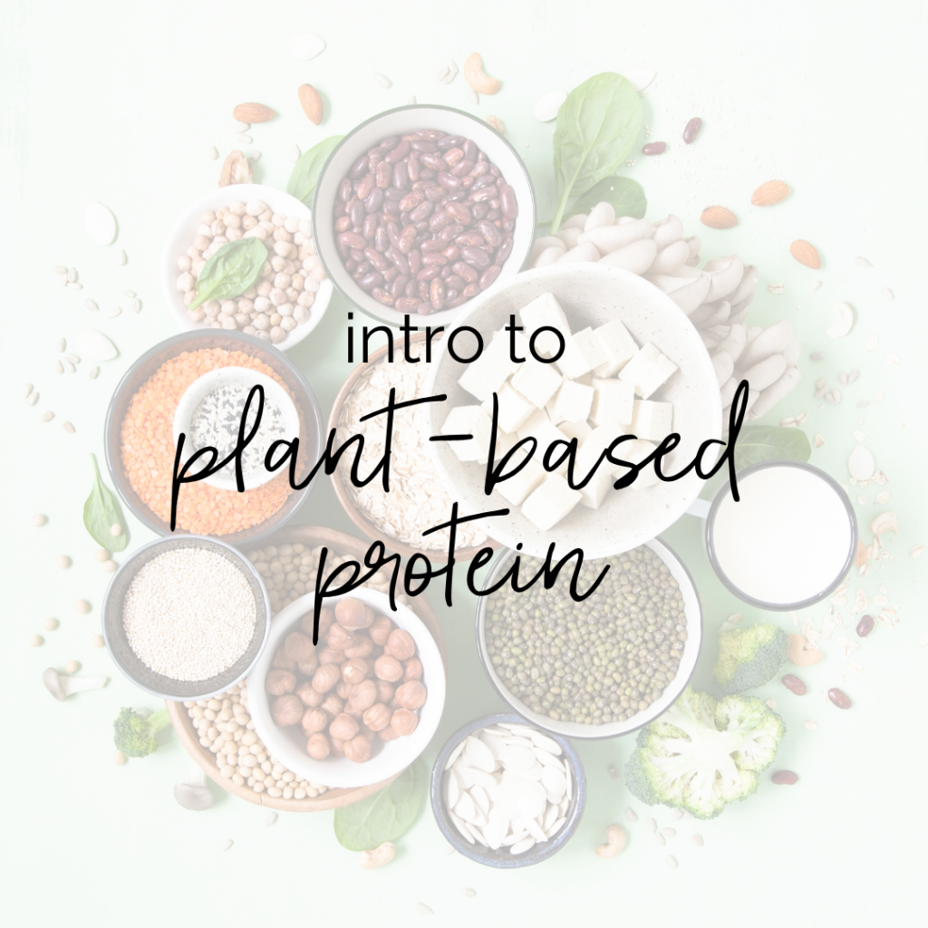"""Intro to Plant-Based Protein"" over bowls of various dried beans and lentils and tofu"