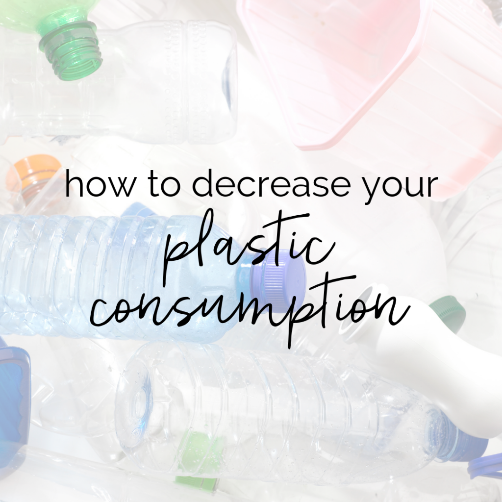 Plastic Free July: How to Decrease Your Plastic Consumption