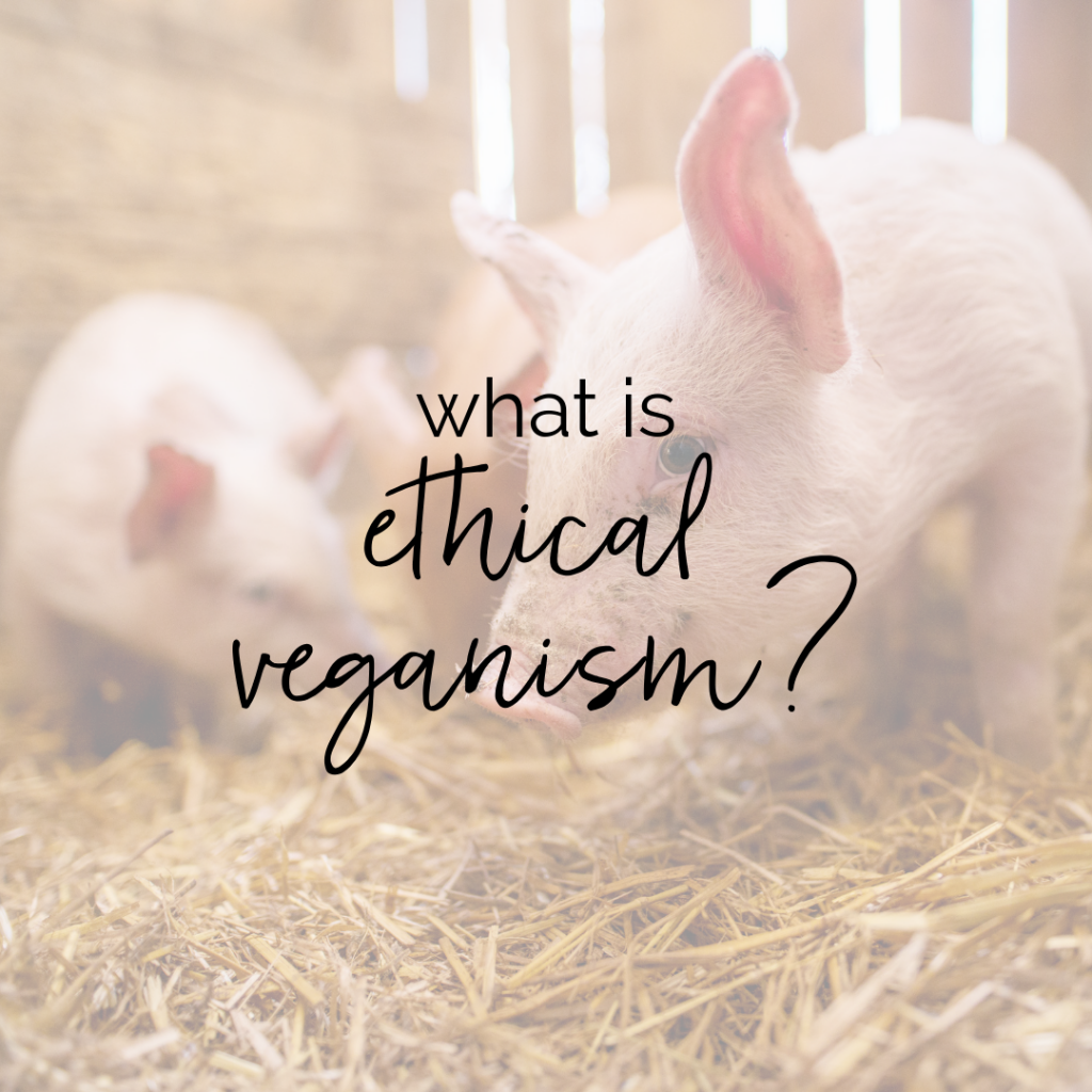 What Does it Mean to Be an Ethical Vegan? | Taylor Wolfram