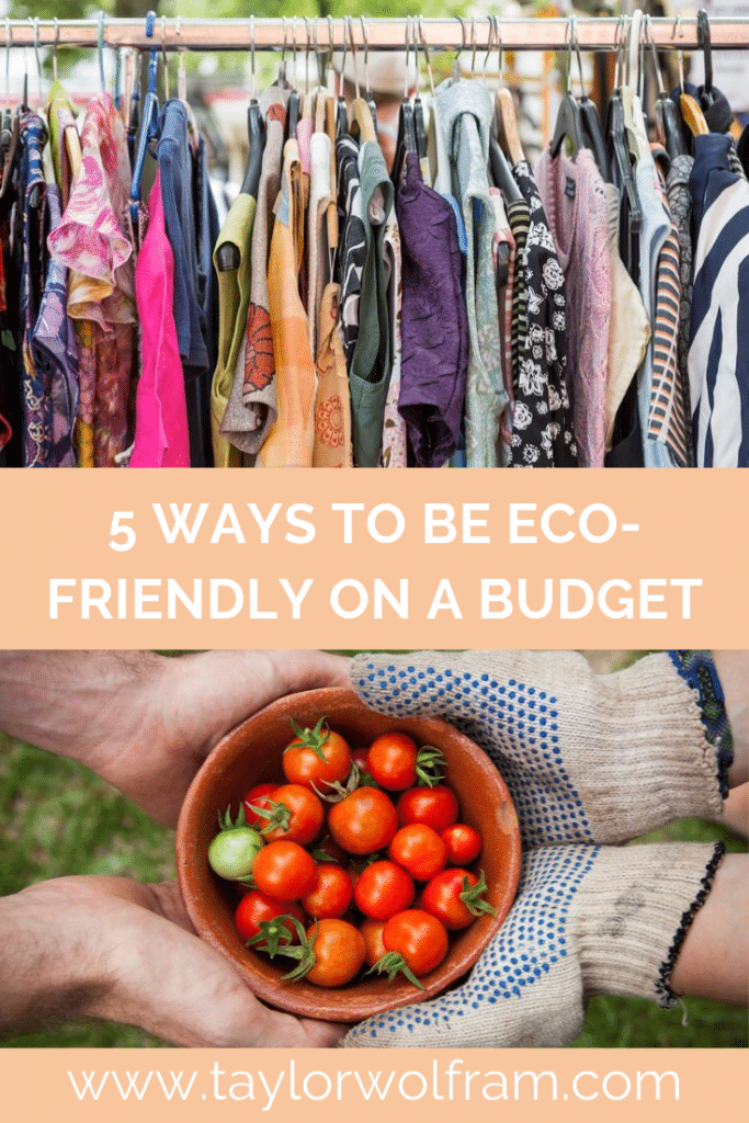 5 Ways to Be Eco-Friendly on a Budget