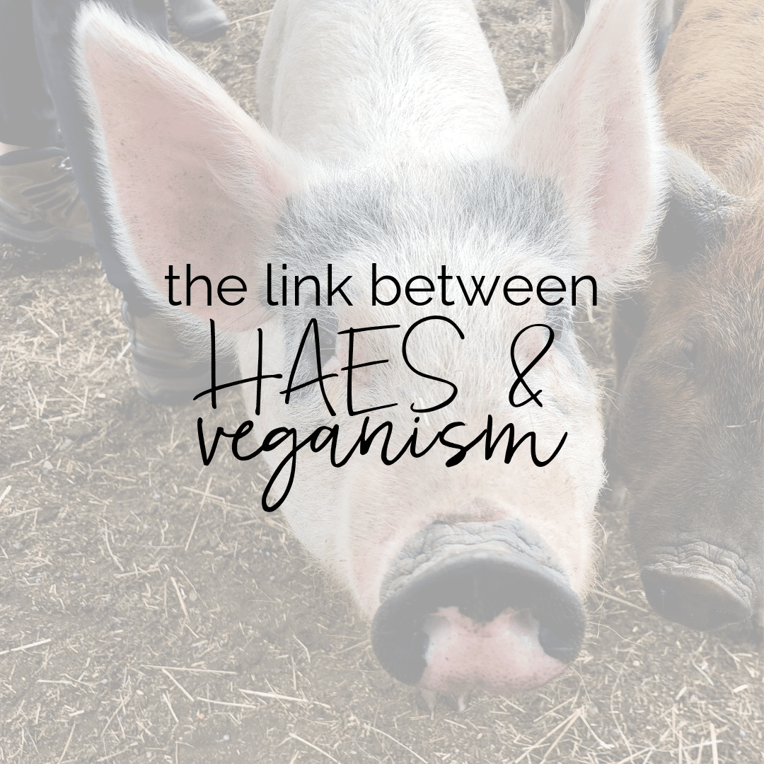 The Link Between Health At Every Size and Veganism